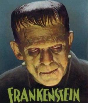 essays frankenstein mary shelley