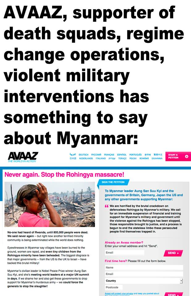 Above: Avaaz campaign