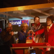 Wednesfield Lights 2012  (44)