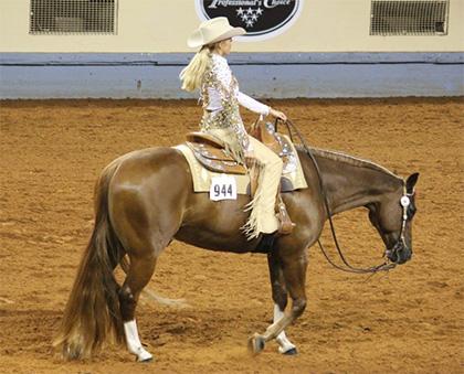 Meade County Fair - Sunday Western Horse Show
