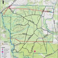 Alapaha River Wildlife Management Area