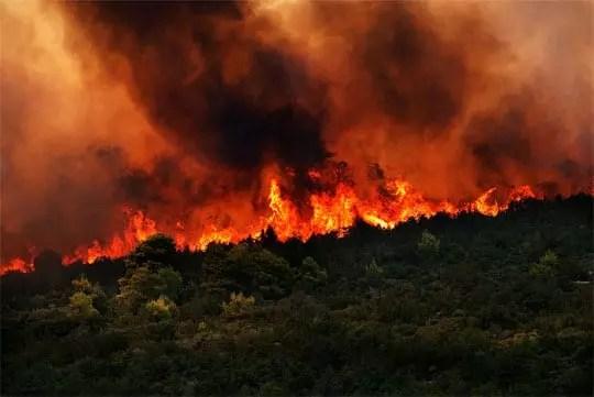 Δασική πυρκαγιά στο Μαραθώνα