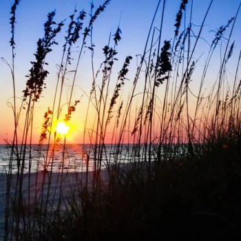 Gulf of Mexico