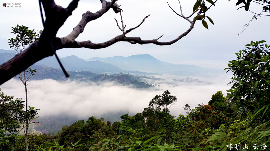 bukit-panorama 林明山