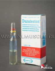 Sustanon Durateston