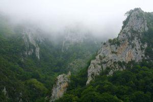 Paisajes-de-Ponga_Asturias_Axtur_019
