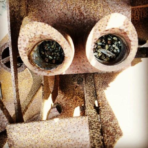 Metal eyes