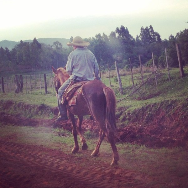 CowBoy in Paraguay