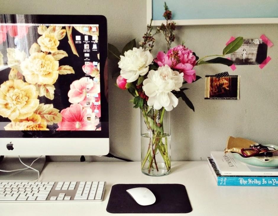 5 Blogs que acompanho