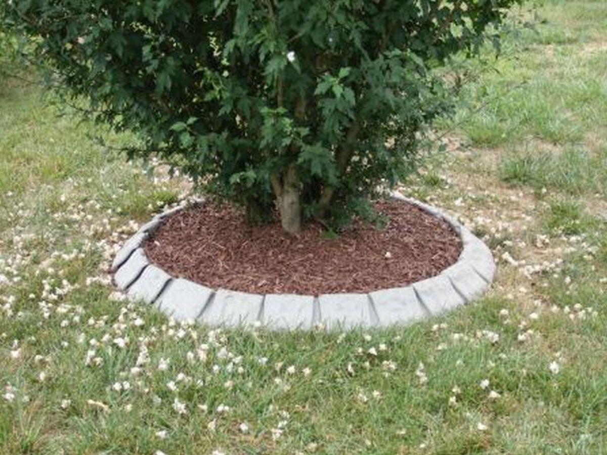 Supreme Lawn Edging Tree Rings Landscape Edging Blog Landscaping Ideas Around Trees S Uk Planting Around Trees Ideas outdoor Landscaping Around Trees Ideas