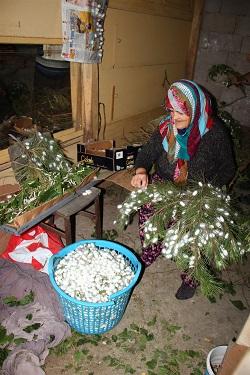 Edirne'de ipek bocekciligi yeniden canlaniyor