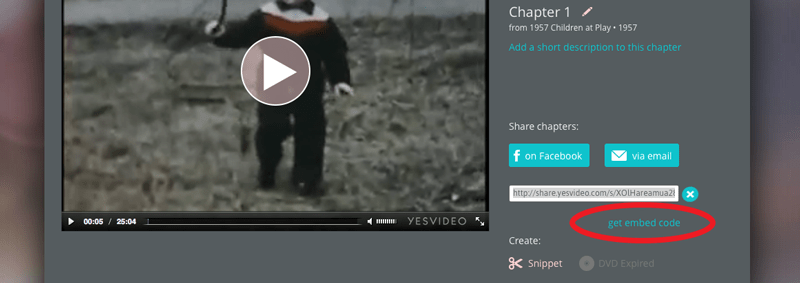 video-embed---step 4