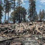 Yosemite-elportalfire-burnedhouse-Golub
