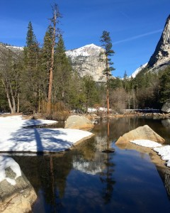 February 2016 Yosemite Instagram Month in Review