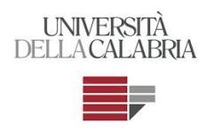 logo_unical