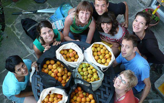 Fruit Picking en Australia