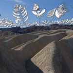 The Metamorphosis on Zabriskie Point