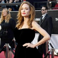 Brad Pitt Forces Angelina Jolie To Put On Weight For Wedding
