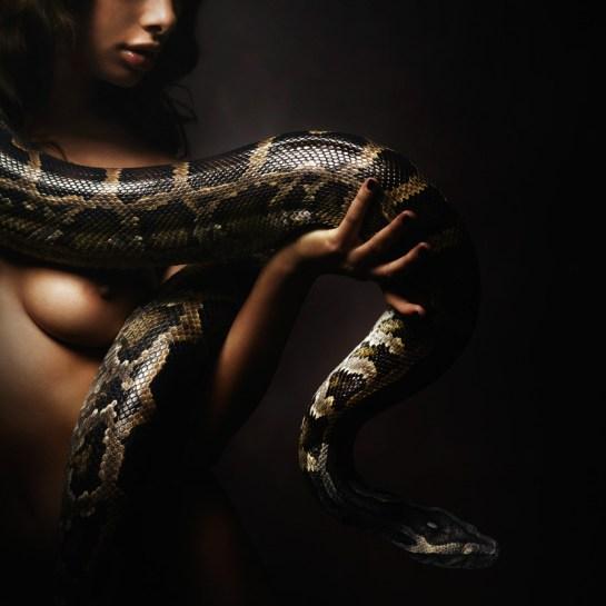 2012 12 04 DARK SAV Snake0659_web_sRGB