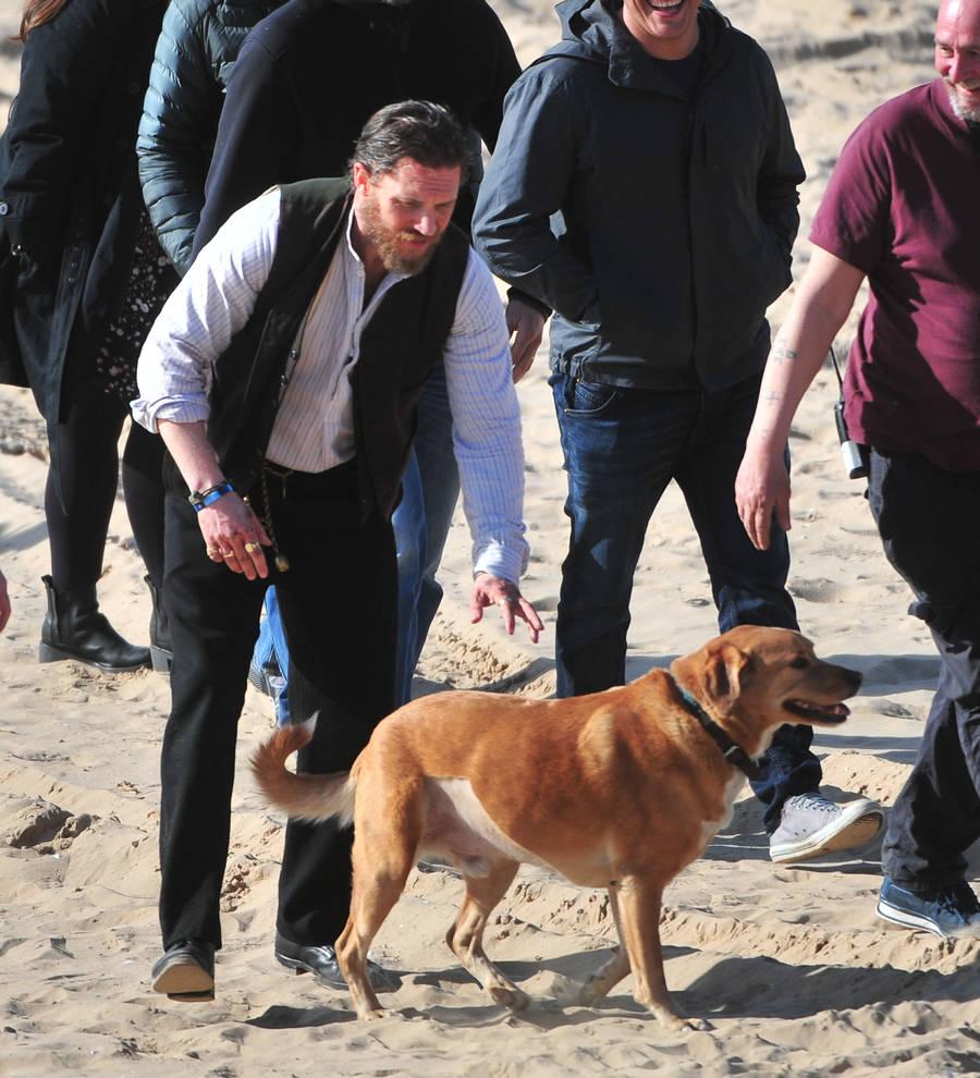 Fullsize Of Tom Hardy Dog
