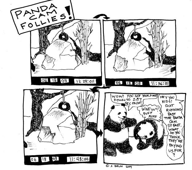 Panda Cam Follies