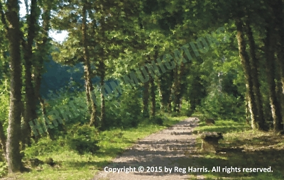 Hero's Journey - Douai Path - Blog Image 1a