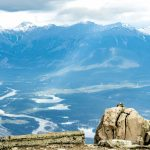 A Marmots Life: Whistlers Mountain