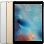 iPhoneがただ巨大化しただけのiPad Proっていったい何に使うの?