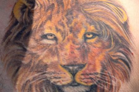 best lion tattoo design