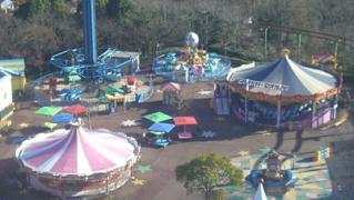 aichi-monkeypark