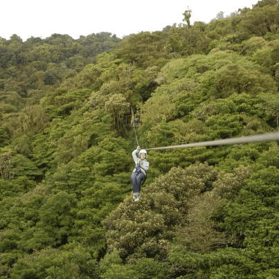 fukui-treepicnicadventure-zipline