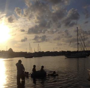 stirling swim
