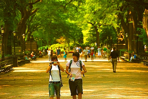 Morning in central park why i love ny in the summer i photo new