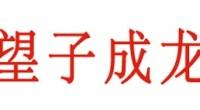 """<strong>Que el hijo se convierta en un dragón</strong> (望子成龙, <em>wangzi chenglong</em>)Esta expresión, que proviene de una leyenda, muestra los deseos de los padres porque sus hijos consigan grandes éxitos (de ahí el dragón) y pone de manifiesto la gran presión a la que se están sometidos los niños chinos, obligados desde muy pequeños a estudiar muy duro e intentar destacar por encima de los demás. <strong>Por Irene T. Carroggio.</strong> <p>Consulta <a href=""""http://www.zaichina.net/diccionario/"""">nuestro diccionario completo</a>.</p>"""