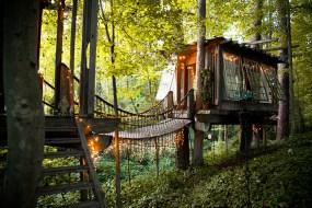 maison arbre cabane