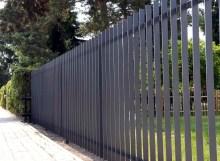 Zaun Piatto 09a
