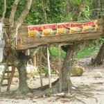 Boat inna Tree, Winifred beach