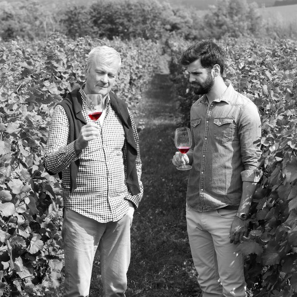 Portrait of senior sommelier and young wine maker standing at vineyards and holding in hands a glass of red wine while consulting about winemaking.