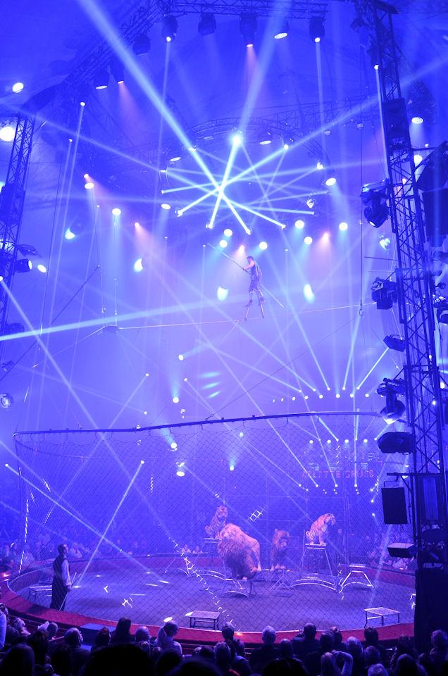 Du 09 au 13 novembre le cirque arlette gruss est villeneuve d ascq for Metre laser castorama lille