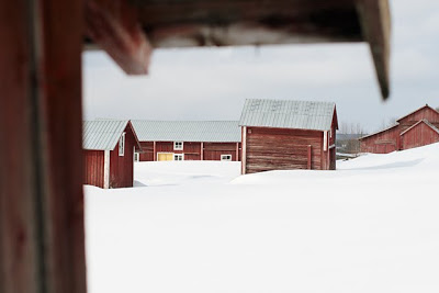 Naturbild AB+46 8 411 43 30info@naturbild.se