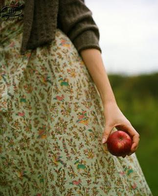 Jesień-w-sadzie-kolory