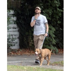 Small Crop Of Tom Hardy Dog