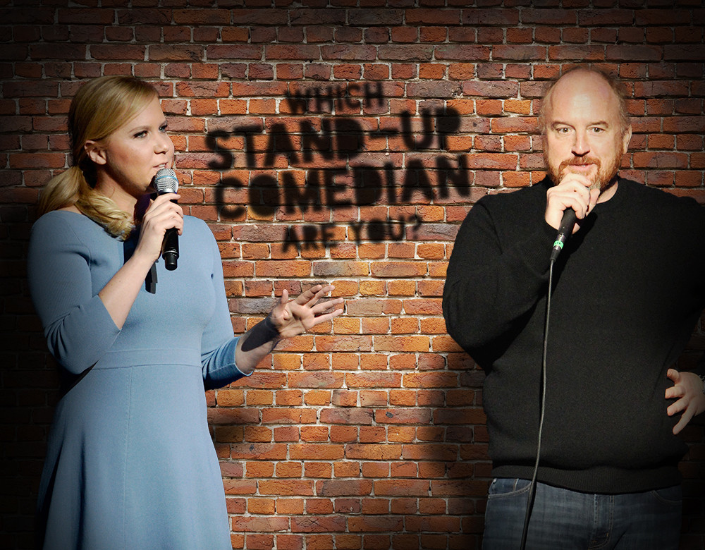 Which Stand Up Comedian Are You    Quiz   Zimbio Begin Quiz