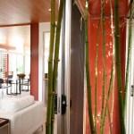 Bamboo garden open to sky