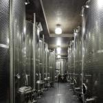 Internal view of the fermentation underground cellar