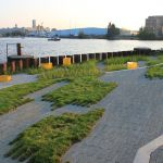 The variegated surface extends into the steel marsh, which collects and cleans stormwater from the site (Images Courtesy Stoss Landscape Urbanism)