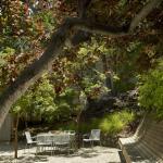 GARDEN BENCH (Images Courtesy Cesar Rubio Photography)