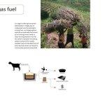 Biogas fuel
