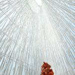 Images Courtesy Sou Fujimoto Architects