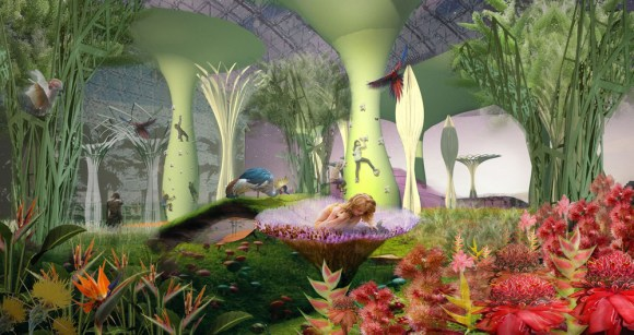 Shikaakwa interior gardens of imagination and discovery